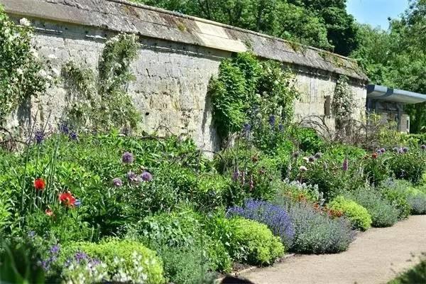 新闻报道  牛津大学植物园的温室也是英国历史上最古老的温室,建造于