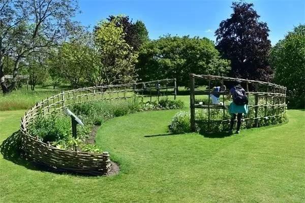 剑桥大学植物园与牛津大学植物园有很多相似之处,比如:都有系统分类